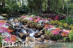 Цветочный водопад, отдушка Франция
