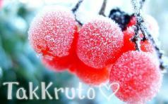 Зимняя ягода, отдушка Россия