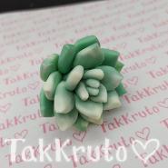 Суккулент Бэйсик (TakKruto), силиконовая форма